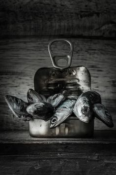 The Magic Of Art Photography Dark Food Photography, Still Life Photography, Photography Photos, Photo Deco, Fish Art, Creative Food, Food Design, Fish Recipes, Food Pictures