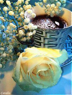 Un petit café et une jolie rose à chacune de mes merveilleuses amies  pour lesquelles j'ai chaque jour une pensée  ..Bisous  et bon jeudi mes chéries <3 <3 <3