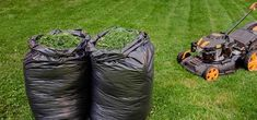 grass-clipping-mulch Wood Chip Mulch, Types Of Mulch, Rubber Mulch, Organic Mulch, Weed Seeds, Landscape Fabric, Compost, Make It Simple