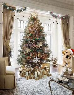 Merry Christmas Gif, Christmas Scenery, Classy Christmas, Cool Christmas Trees, Christmas Pictures, Beautiful Christmas, White Christmas, Natural Christmas, Merry Christmas And Happy New Year