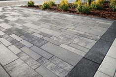 Sleek Concrete Pavers for a Modern or Contemporary Backyard Design in Bedford Hills, NY Modern Driveway, Driveway Design, Modern Backyard, Modern Landscaping, Concrete Paver Patio, Paver Walkway, Driveway Pavers, Outdoor Pavers, Concrete Driveways