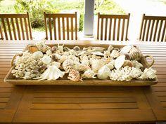 Display shells