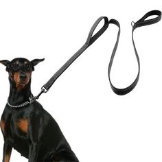 Great savings on this Dog Leash 2 Handles For Safety     FREE worldwide shipping    http://www.pawsify.com/product/dog-leash-2-handles-for-safety/