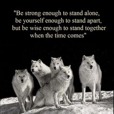 .Be Strong Enough To Stand Alone...Be Yourself To Stand Apart And Be Wise Enough To Stand Together When The Time Comes.