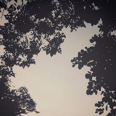 sky when i miss u Missing U, I Miss U, Clouds, Sky, Outdoor, Heaven, Outdoors, Miss You, I Miss You