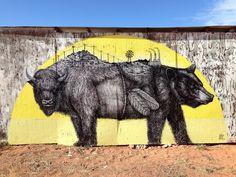 Fusion of Street art and Wild Life by Alexis Diaz's. CutPaste Studio  Art, Artist, Artwork, Illustrations, Entertainment, beautiful,creativity, Street art, murals, Graffiti art.