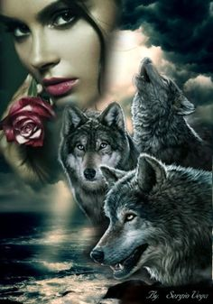 Wolf Images, Wolf Photos, Wolf Pictures, Native American Drawing, Native American Wolf, Wolf Tattoo Sleeve, Wolves And Women, Werewolf Art, Beautiful Love Pictures