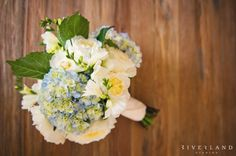 Bride's Bouquet featuring blue hydrangea and white roses