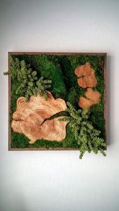"Beautiful Preserved Plants: Mood Moss, Sheet Moss, Wood Disks, artificial Donkey Tail Succulents. Frame: Wood with a dark walnut satin-finish. Origin: Hawaii, ""Made in Hawaii""SpecificationsSold By Designs Reimagined, LLC Width 24"" Depth 3"" Height 24"" Weight 17 lb. Materials 100% natural selected preserved moss arrangement, wood frameDesigner Designs Reimagined, LLC"