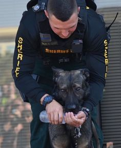 Military Dogs, Police Dogs, Military Police, K9 Officer, Malinois, Hot Cops, Dog Search, War Dogs, Men In Uniform