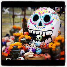 Skulls  Día de Muertos, Mexico