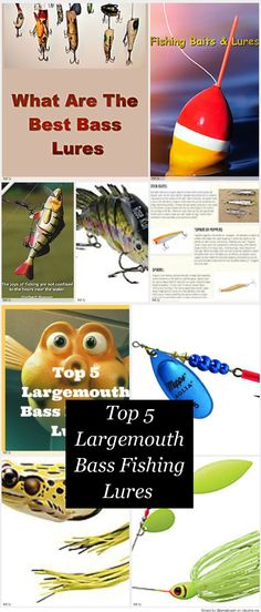 I did some research and found the top 5 lagemouth bass fishing lures. These are the lures that most bass fishermen have in their tackle boxes and the ones that they use to catch fish. Any of these would make great gifts for a largemouth bass angler on your list. These bass lures would make great gifts because these are things that bass fishermen use and quite often lose or the lures wear out and need to be replaced. So you can't go wrong when you give these as gifts.
