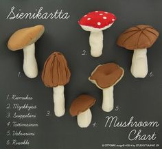 Autumn is great time of year to pick mushrooms. They are everywhere, on the sides of footpaths, sprouting under the trees, clinging to s. Mushroom Crafts, Felt Mushroom, Felt Patterns, Sewing Patterns Free, Skirt Patterns, Blouse Patterns, Free Pattern, Felt Crafts, Fabric Crafts