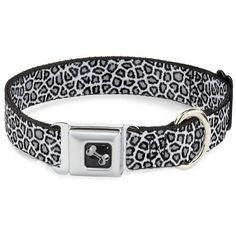 Buckle-Down Leopard White Dog Collar Bone, Large/15-26' >>> Check out this great product. (This is an affiliate link and I receive a commission for the sales)