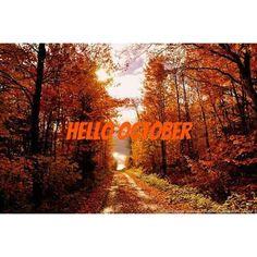 """Hello October!  #hellooctober #october #autumn #trees #pumpkin #maple"" Photo taken by @winter_wonderland_girl on Instagram, pinned via the InstaPin iOS App! http://www.instapinapp.com (09/30/2015)"