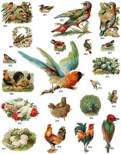 Dover~Vintage~personal use only ~ Bird Scrap Variety Two by Home and Heart, via Flickr
