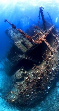 Sunken ship found in the Red Sea!