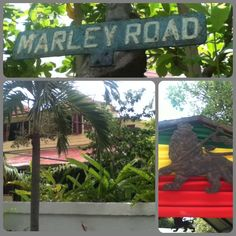 Bob Marley Museum in Kingston, Jamaica --- we'll fo sho check it out soon baby ;)
