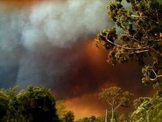 Twitter Image, Family Memories, Abc News, Firefighter, Australia, Clouds, Earth, In This Moment, History