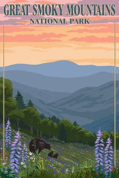 Bears Spring Flowers - Great Smoky Mountains National Park, TN - Lantern Press Poster