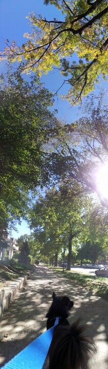 A vertical panoramic shot.