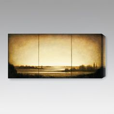 Have to have it. Amber Light I Indoor/Outdoor Canvas Print by St. John - $99.99 @hayneedle