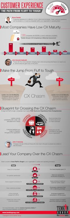 CX Fluff to Tough infographic