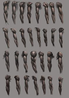 Arm Studies by *JoshSummana on deviantART ✤ || CHARACTER DESIGN REFERENCES | キャラクターデザイン • Find more at https://www.facebook.com/CharacterDesignReferences if you're looking for: #lineart #art #character #design #animation #draw #reference #anatomy #artist #pose #gestures #how #to #tutorial #comics #conceptart #modelsheet #elbow #supraspinatus #deltoids #triceps #biceps #shoulders #shoulder #forearms #forearm #wrists #wrists #arm #arms #radius #humerus #ulna || ✤
