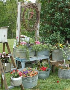 Nice use of old wash tubs and buckets.