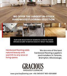 Cheap Hardwood Floors, Laminate Flooring, Tile Stores, The Tile Shop, Flooring Store, Baseboards, Floor Design, Wood Species, Devon