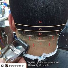 #Repost @barbers4men ・・・ REPOST: barberlessons_ // Quick and simple #NeckTaper diagram ✏️ diagram by: @scissorhandsjoff and haircut by: @vic_mlb