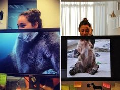 What to do in the office workers when bored