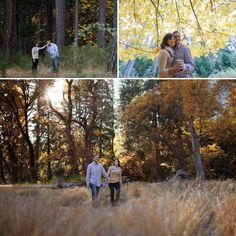 Yosemtie Wedding Photographer