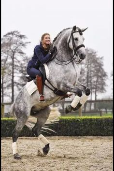 I use to ride a horse that looked much like this one. I learned to jump posts with him. He was quite spirited!
