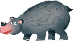 bear - urso