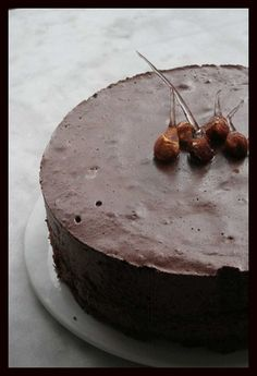 Chocolate entremet …… Crispy & sparkling entremet: THE easy recipe, … - Recipes Easy & Healthy Easy Healthy Recipes, Sweet Recipes, Easy Meals, Thermomix Bread, Edible Food, Bread Cake, Fun Cup, No Cook Desserts, Mousse Cake