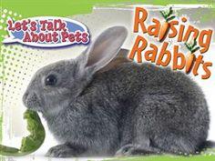 Raising Rabbits / David Armentrout