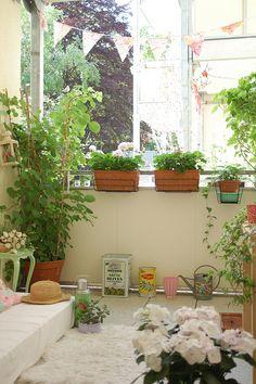 My balcony   Flickr - Photo Sharing!