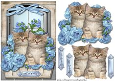Cute Kittens in Window - CUP761515_936 | Craftsuprint