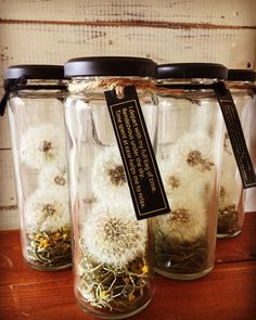 🎋 rest and relaxation ideas for healthy living - pescatarian lif. Diy And Crafts, Arts And Crafts, Decor Crafts, Potion Bottle, Deco Floral, Rest And Relaxation, Bottles And Jars, Nature Crafts, Creative Gifts
