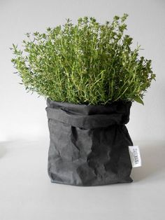 Plant sack grey cement