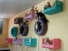 Painted tires, crates and shelvesDamgle cat toys from the ceiling, add a DIY scratching post and your good to go with a gorgeous DIY kitty room x