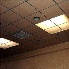 Los plafones de Procovers brindan una imagen interior de gran elegancia y diseño vanguardista. http://www.procovers.com.mx/