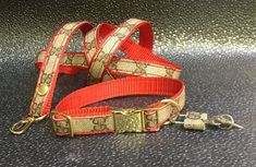 3a761590539c6 Red Gucci dog collar and leash SET FOR 150