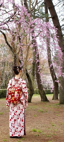 Lady in Kimono, Imperial Garden, Kyoto, Japan by chee_hian