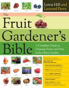 The Fruit Gardener'S Bible- A complete guide to growing fruits and berries in the home garden. Focuses on every aspect of planting, growing and harvesting fruits, berries and nuts on a small scale. Paperback, 302 pages. Organic Fruit, Organic Vegetables, Gardening Books, Gardening Tips, Flower Gardening, Hydroponic Gardening, Container Gardening, Bible Fruit, Prune Fruit