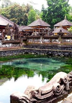 Vibrant green waters seen in the Holy Water Temple outside Ubud, Bali