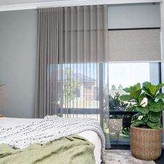 If you are looking for new curtains and blinds for your Perth home, make sure you don't make a faux paus when it comes to pairing them with our top do's & don'ts list. Curtains And Blinds Together, Blinds And Curtains Living Room, Sheer Curtains Bedroom, Bedroom Curtains With Blinds, Modern Curtains, Curtains For Windows, Curtain Designs For Bedroom, Lounge Curtains, Contemporary Curtains