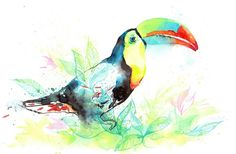 Wall Art Road - Watercolour Toucan Canvas Print ~ Part of the Tropic Series, $150.00 (http://www.wallartroad.com/watercolour-toucan-canvas-print-part-of-the-tropic-series/)