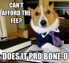 lawyer jokes lawyer jokes.